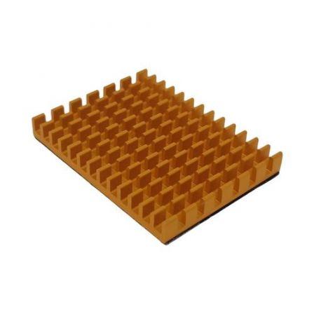 XL Koelblok voor Raspberry Pi 4B - Goud