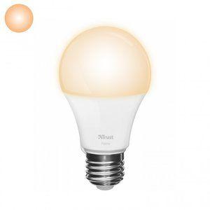 Klik aan Klik uit ZLED-2209 Dimbare E27 LED Lamp - Flame White